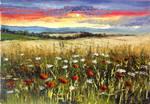 Sunset's Wildflowers