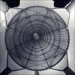 Fake symmetry by bubus666