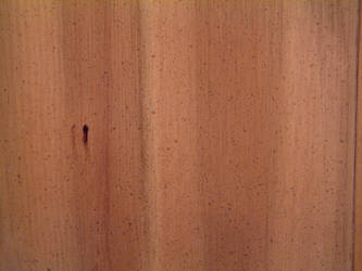 Wood Texture 2 by Riverd-Stock