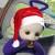 Christmas Tinky icon