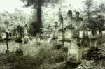 Cmentarz w Radruzu