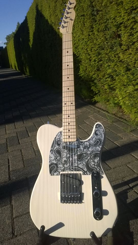 Paisley Style Telecaster by RocknRollCustoms