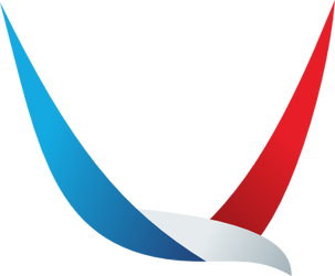 American Airlines Concept Logo by WinginWolf
