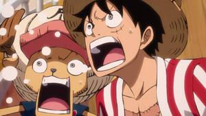 One Piece Episode 896 Screencap_23