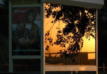 Bus Stop at Sunrise