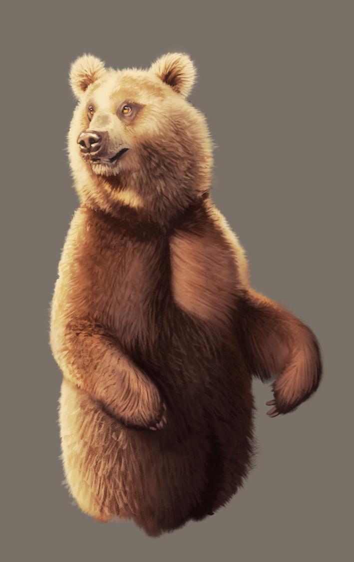 Bear furr practice #2 by Ungen333