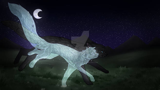 [Warrior Cats] Running with the stars