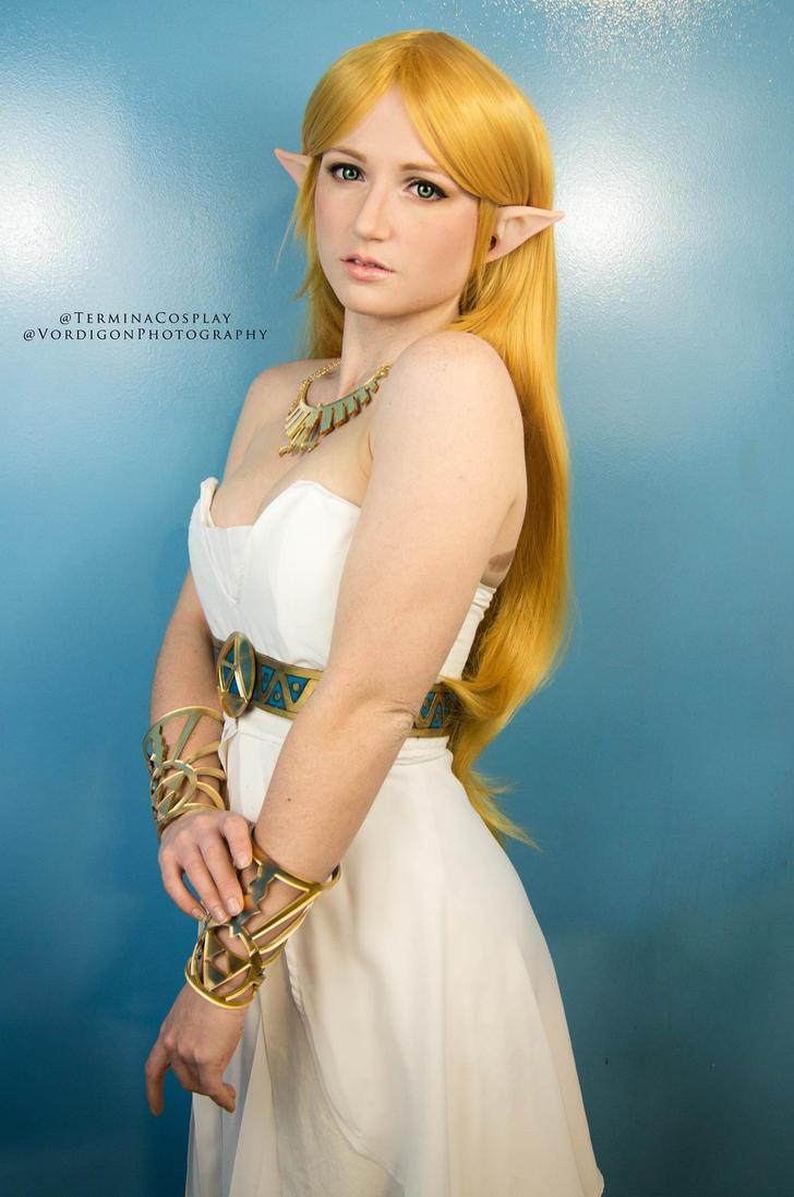 Zelda: Breath of the Wild by TerminaCosplay