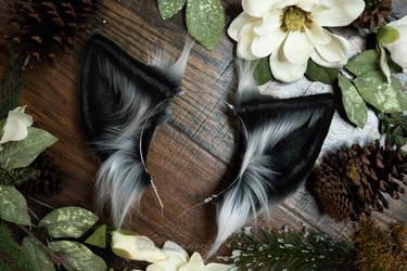 Dark Gray Wolf Ears