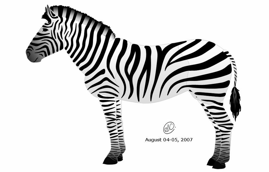 Plains Zebra by SaraChristensen