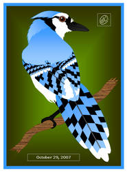 Blue Jay Portrait by SaraChristensen