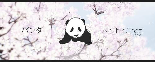 Panda by djlatino