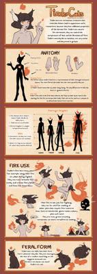 TinderCats Species Visual Guide by Lahtirus