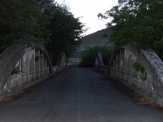 Indian Timothy Bridge