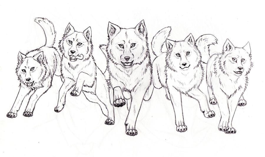 Wolf Pack By Inarium On DeviantArt