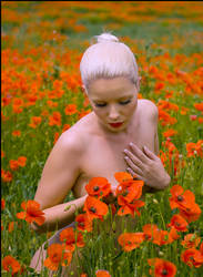 Fiona in Poppy Field 1 by JeremyHowitt