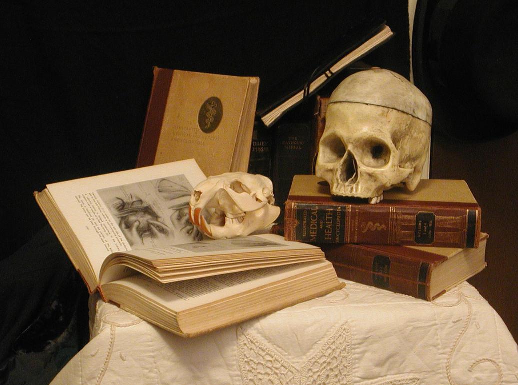 Surgeon's Desk 02 by lockstock
