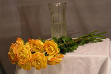 Gold roses 01