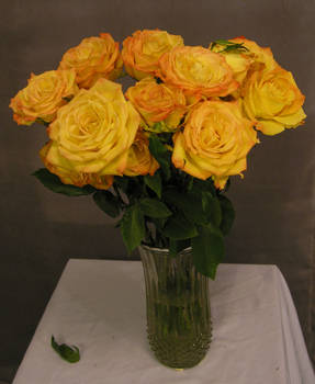 Gold Roses 09