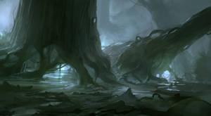 Swamp old trees