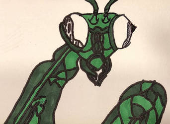 Praying Mantis / Insectoid