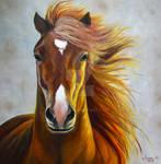 Jas Horse