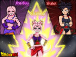 Dragon Ball Fusion: Partners in Time