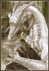 Dragon Whisperer by AngelaSasser