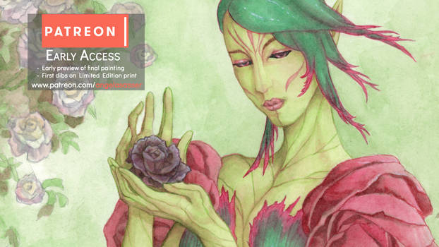 Early Access Preview: The Rose Seelie