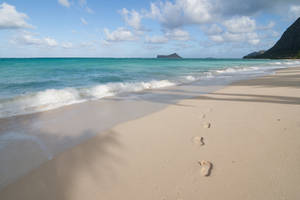 Hawaii Beach Footprint Stock by leeorr-stock