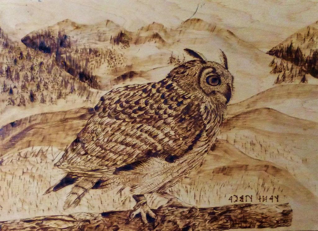Owl by tacsitimea