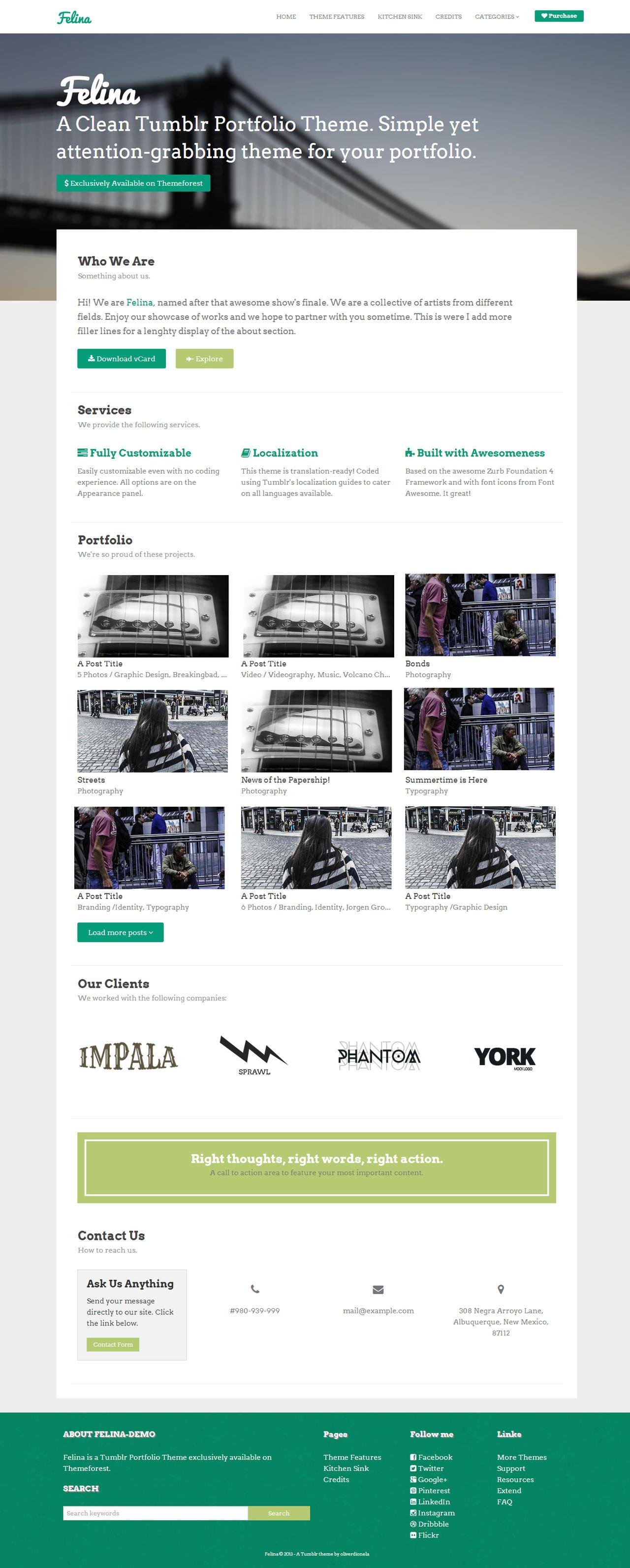 Felina Tumblr Portfolio Theme by odionela