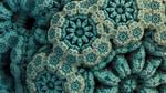 Blue zoanthids