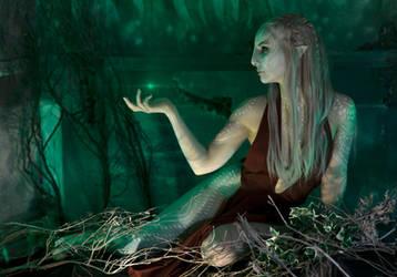Tarot by Ebelar
