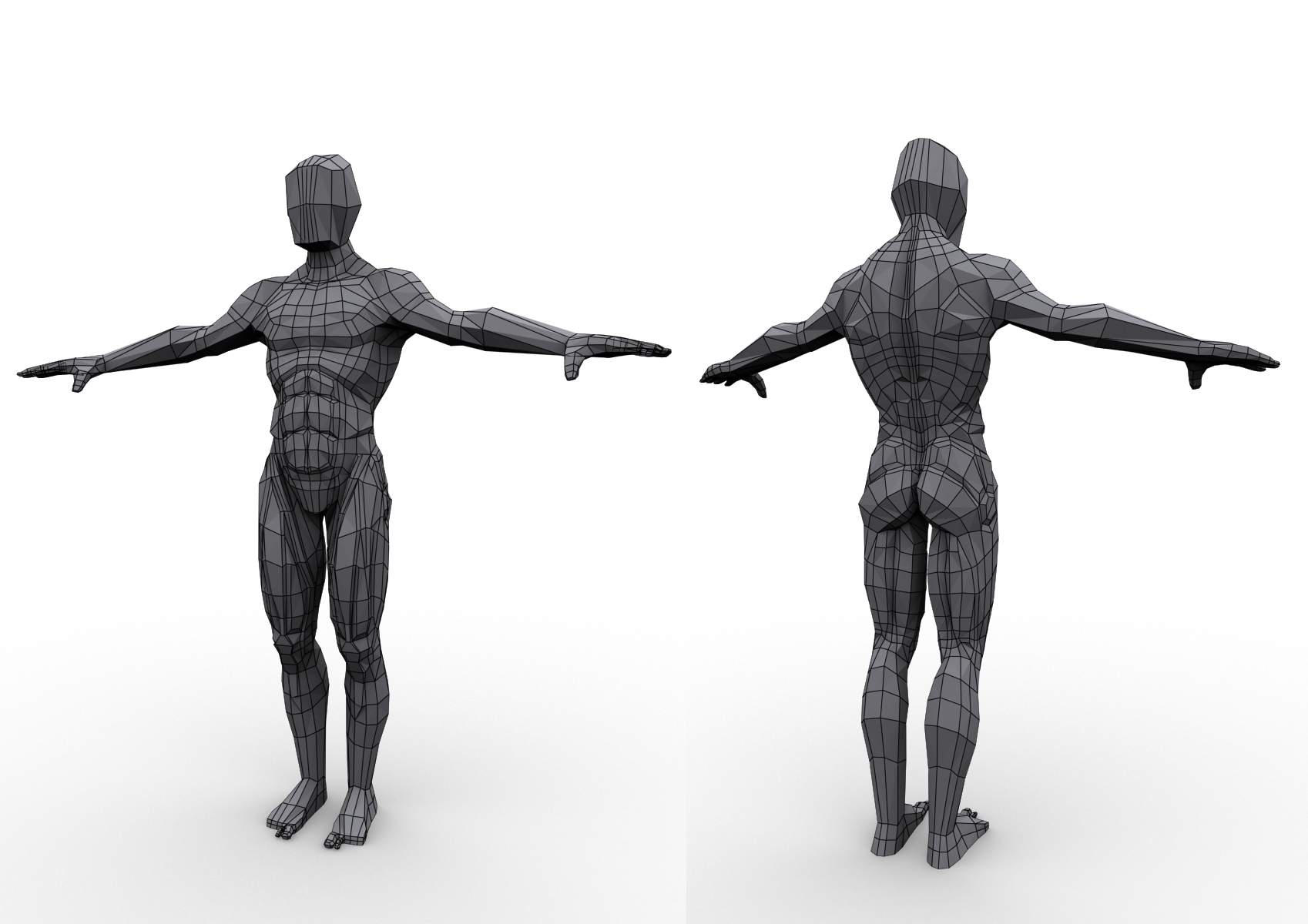 Niedlich Kostenlos 3d Anatomie Modelle Zeitgenössisch - Anatomie ...