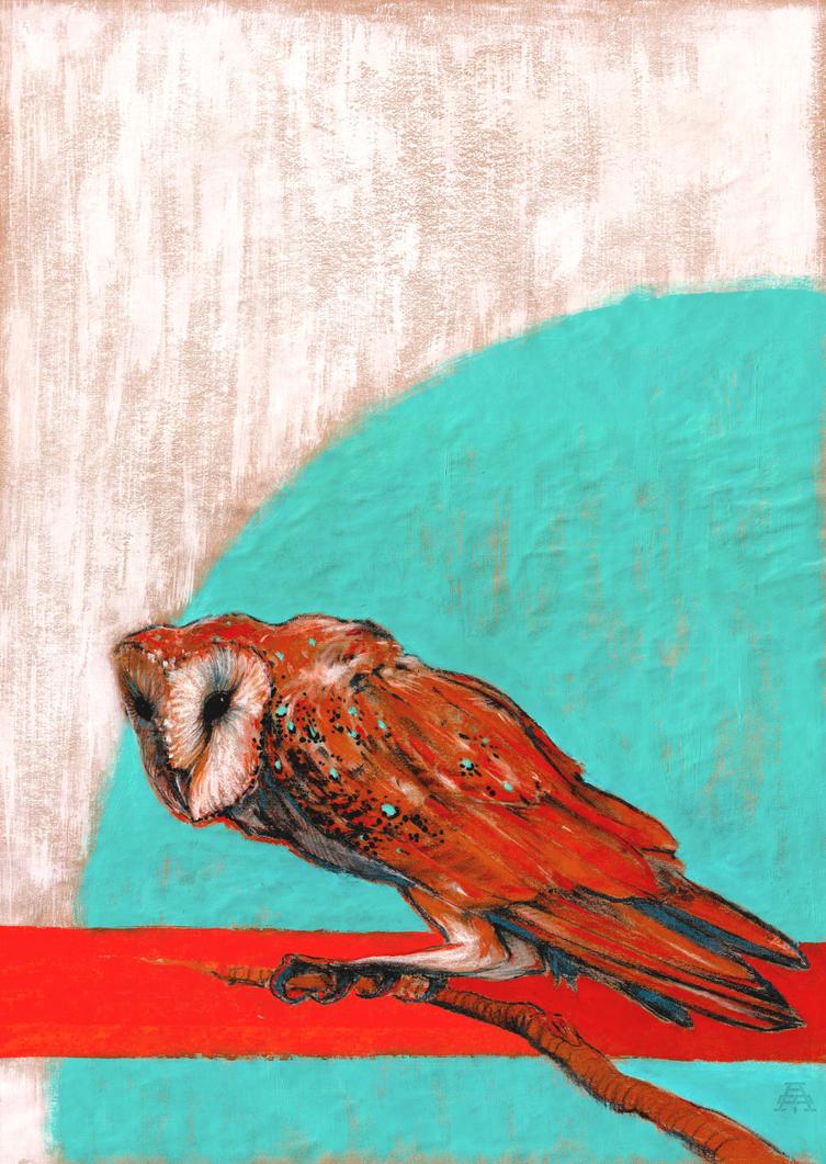 Barn owl series - 1 by shvau4