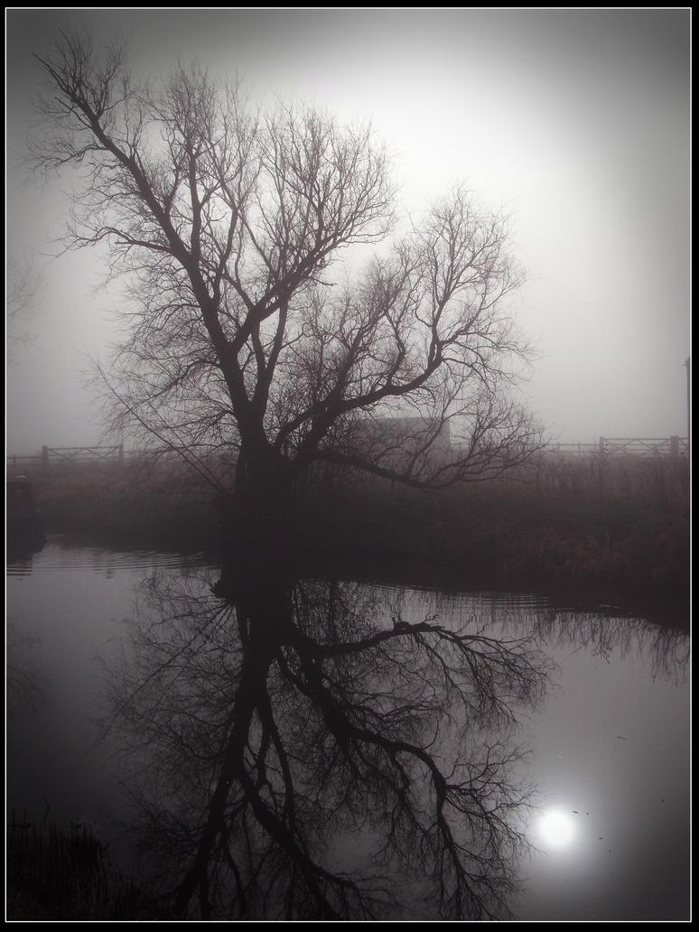 Still waters by alanclimb