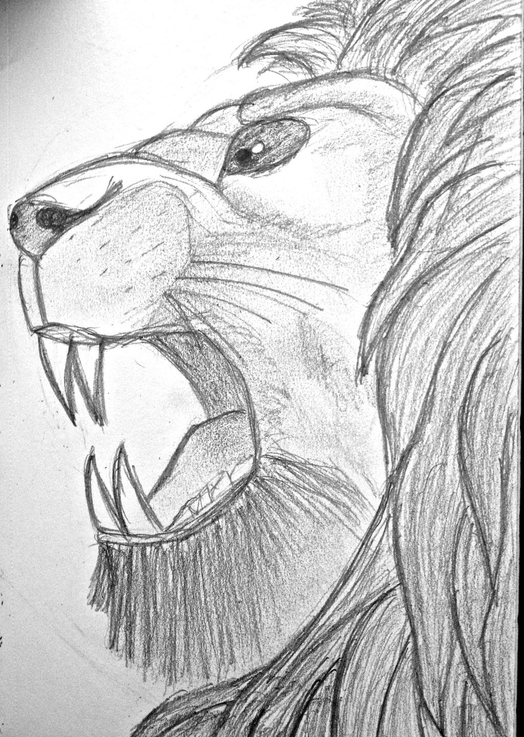 The roaring lion by aw... Lion Roaring Drawing