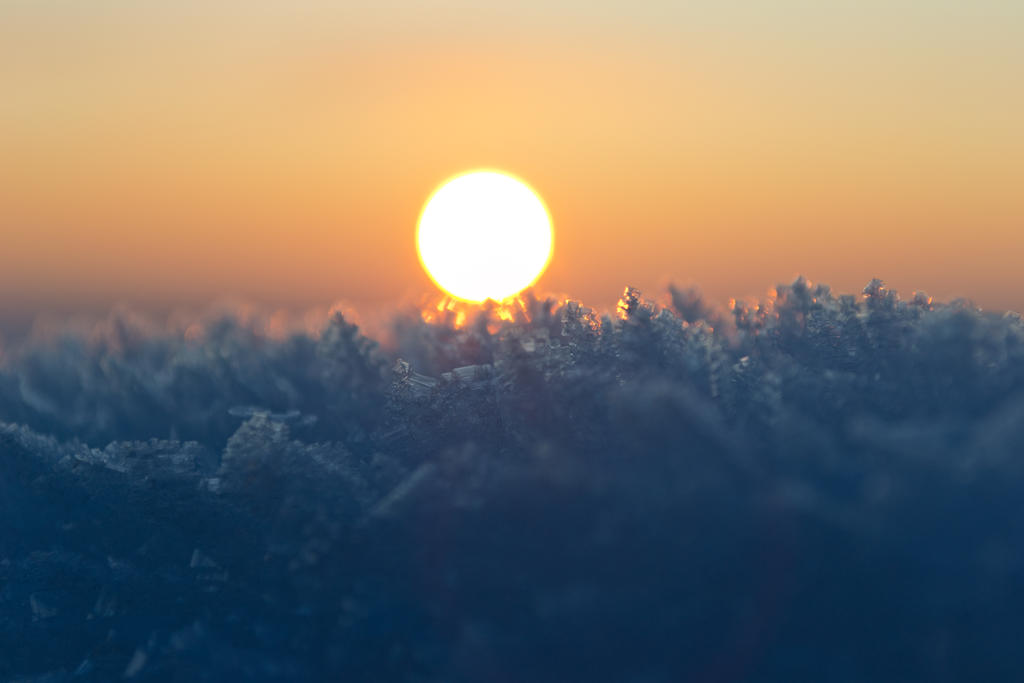 Snowflakes by gluk134
