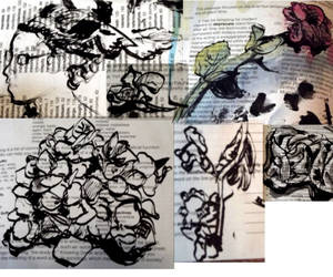 Altered Book Calligraphic Drawings