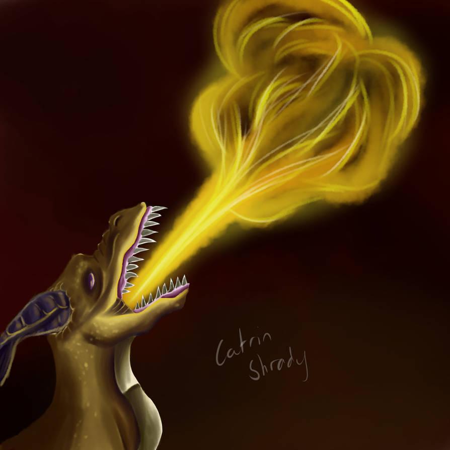 dragon_fire_by_shadowleopard01_dd4dc8o-pre.jpg