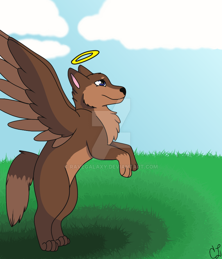 Winged wolfo by RaveGalaxy