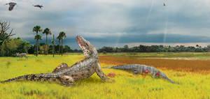 Collab - When Crocodiles Roamed