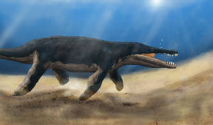 Kronosaurus boyacensis
