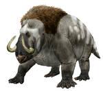 Mammuthodontosaurus