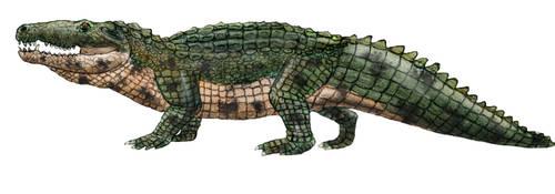 Wornga - Cancrochampsa ammuti (version 2) by Zimices