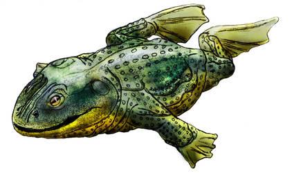 Gurukmun - Teratobufo pantophagus by Zimices