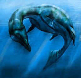 The seas of the Allocene