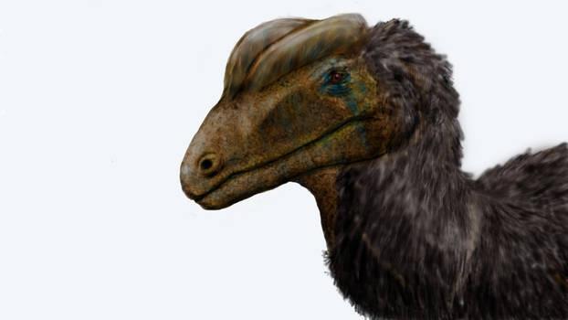 An archosaur