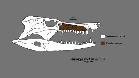 Amargasuchus
